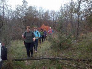 2014-11-15 Nordic Walking Monte Sambuco (2)