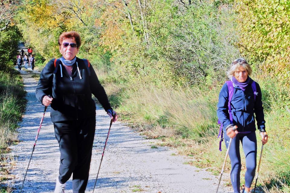 2015-10-10 Nordic Walking Malchina-Gorjansko (19)