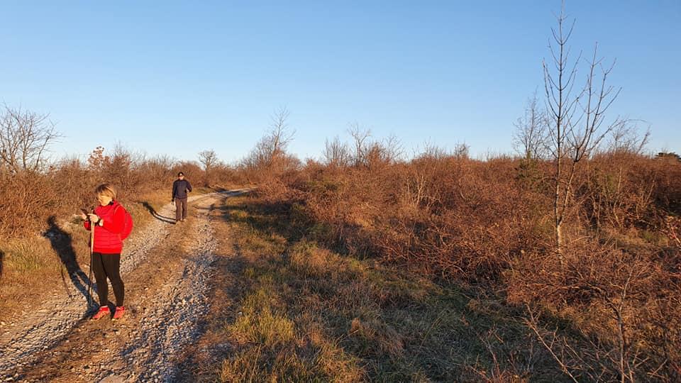 2020-01-11 Nordic Walking - Sela na Krasu - Vojščica (F) (5)
