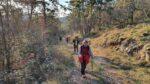 2020-01-11 Nordic Walking - Sela na Krasu - Vojščica (S) (7)