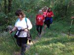 2020-05-27 Nordic Walking - Monte Coste Sales e Colludrozza (S) (6)