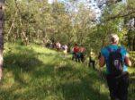 2020-05-27 Nordic Walking - Monte Coste Sales e Colludrozza (S) (7)