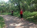 2020-06-03 Nordic Walking - Sgonico-Monte Lanaro-Rupinpiccolo (S) (5)