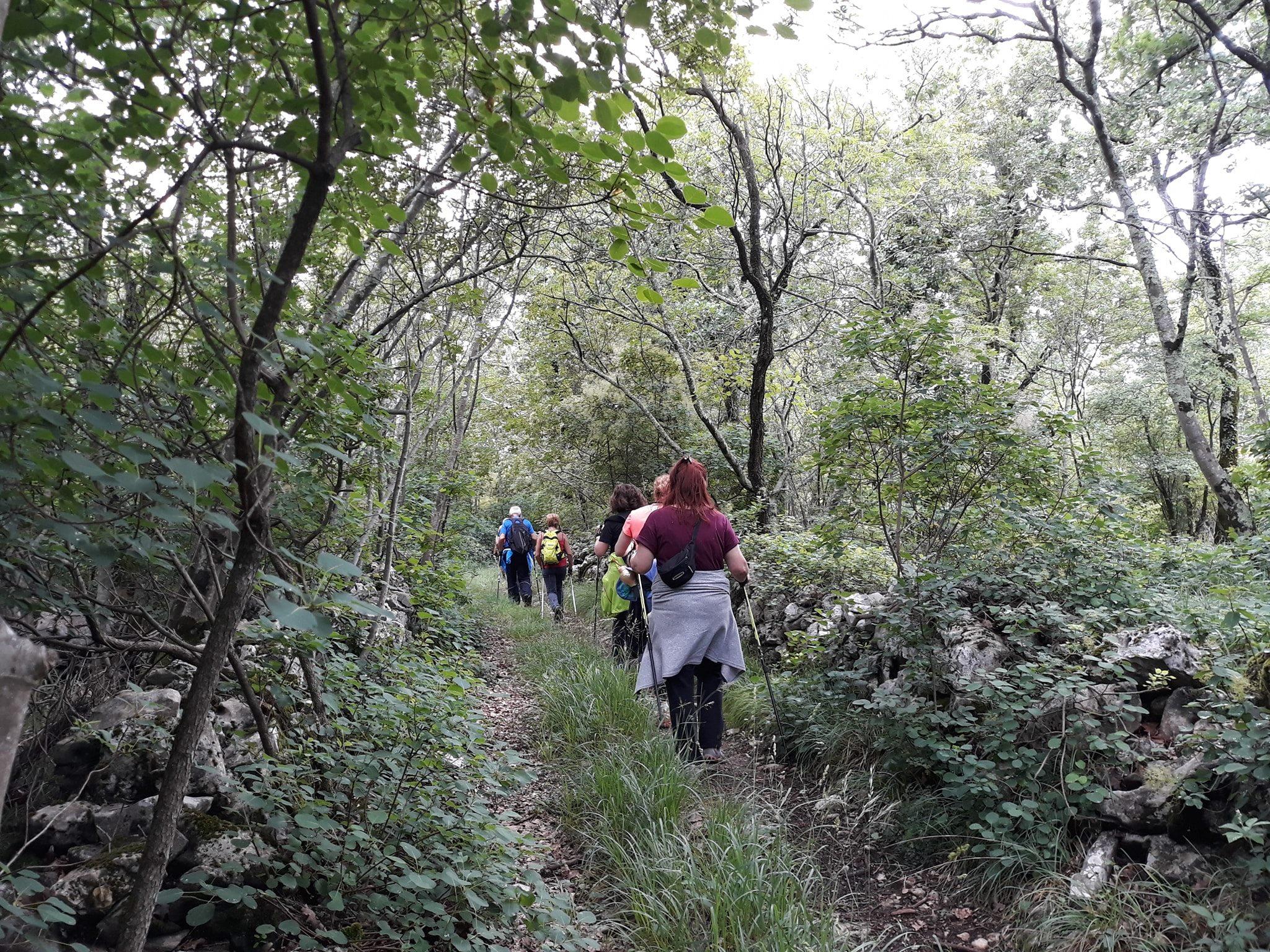 2020-06-06 Nordic Walking - Bristie-Prosecco-Sales (S) (3)