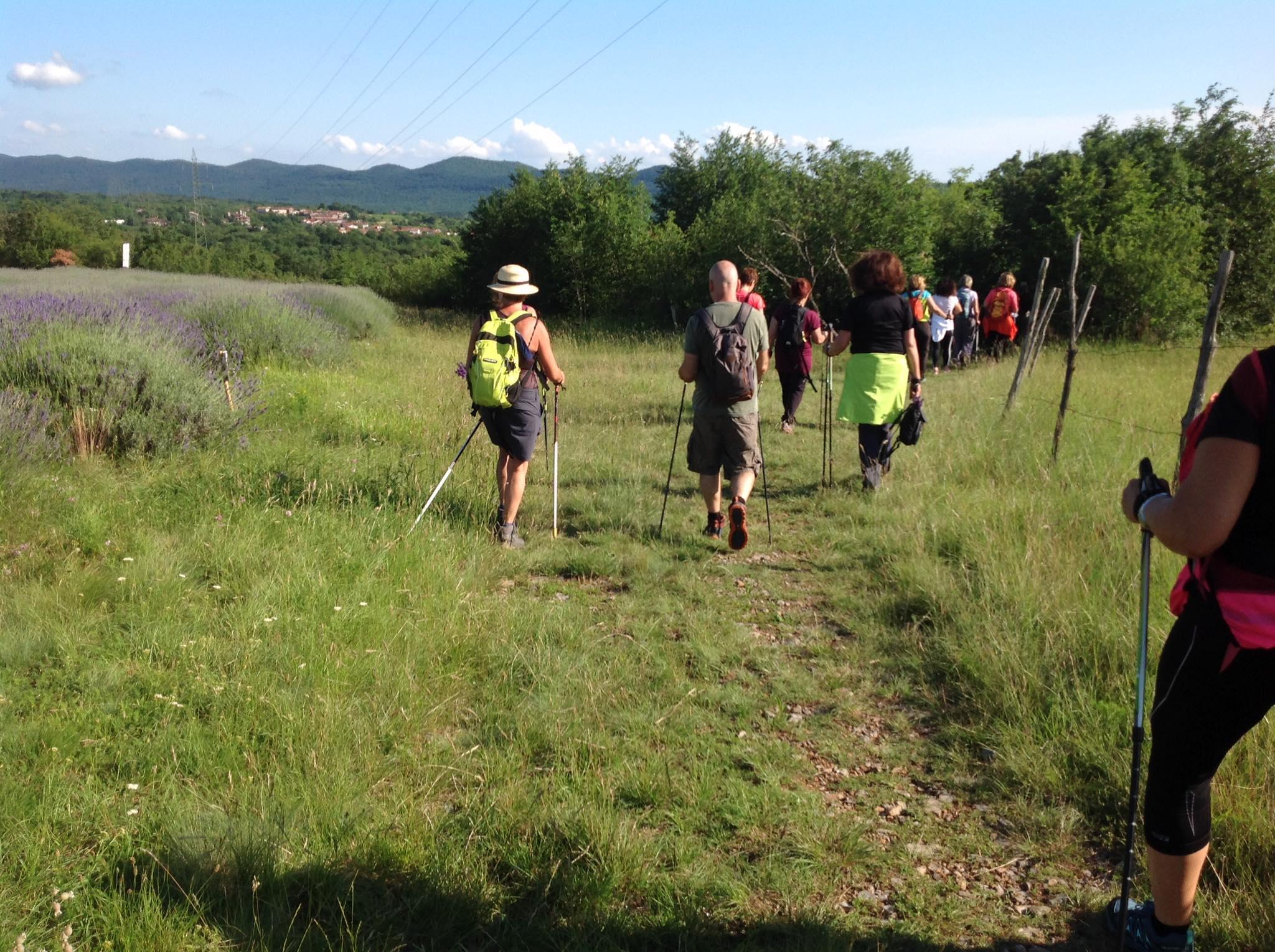 2020-06-17 Nordic Walking - Gorjansko-Ivanij Grad (S) (2)