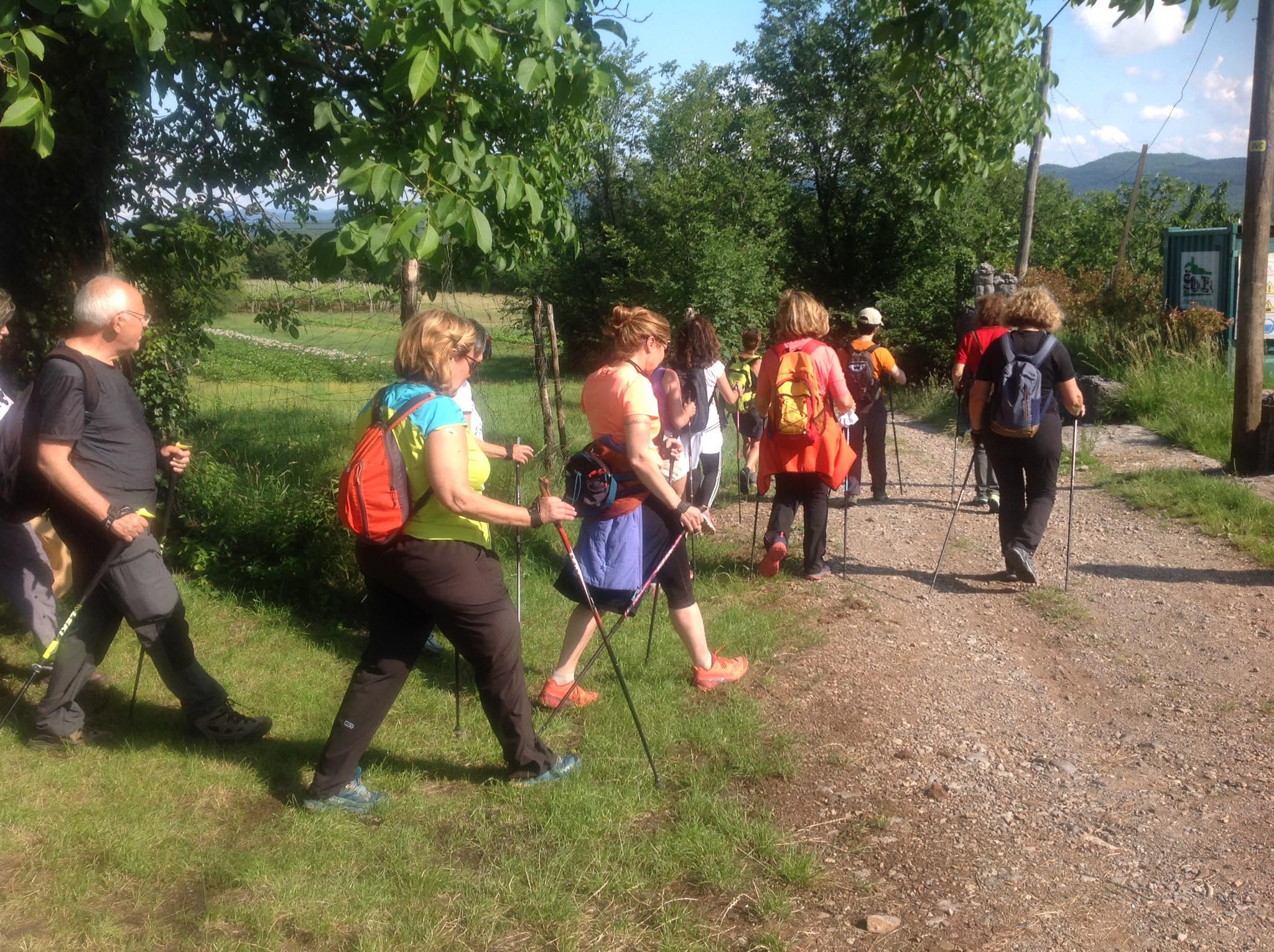 2020-06-17 Nordic Walking - Gorjansko-Ivanij Grad (S) (4)