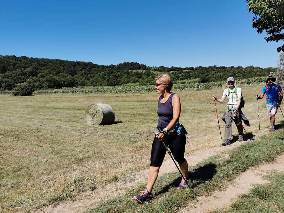 2020-07-05 Nordic Walking - MEDEAZZA - BRESTOVICA (D) (4)