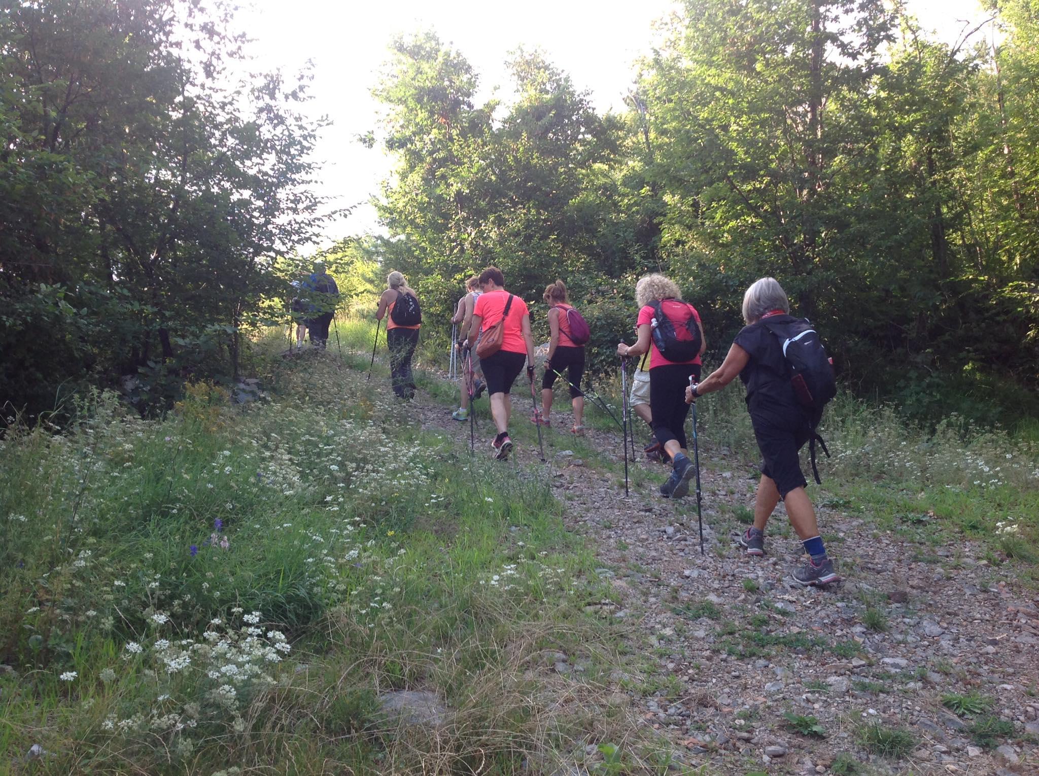 2020-07-22 Nordic Walking - Monte Stari Tabor (S) (8)