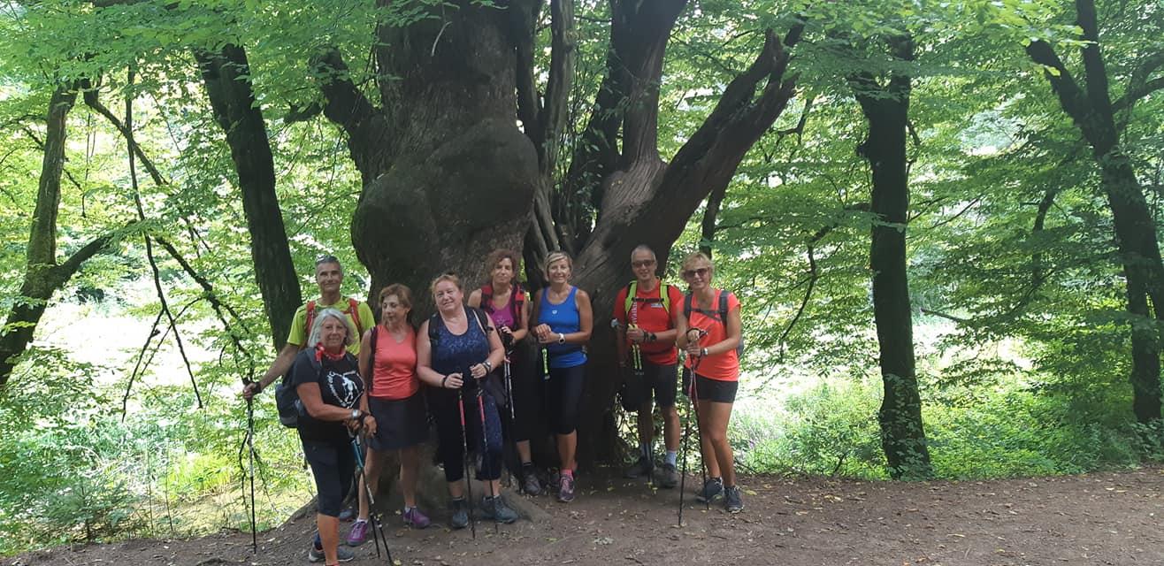 2020-08-02 Nordic Walking - Rakov Škocjan-Valle Rio dei Gamberi (D) (16)
