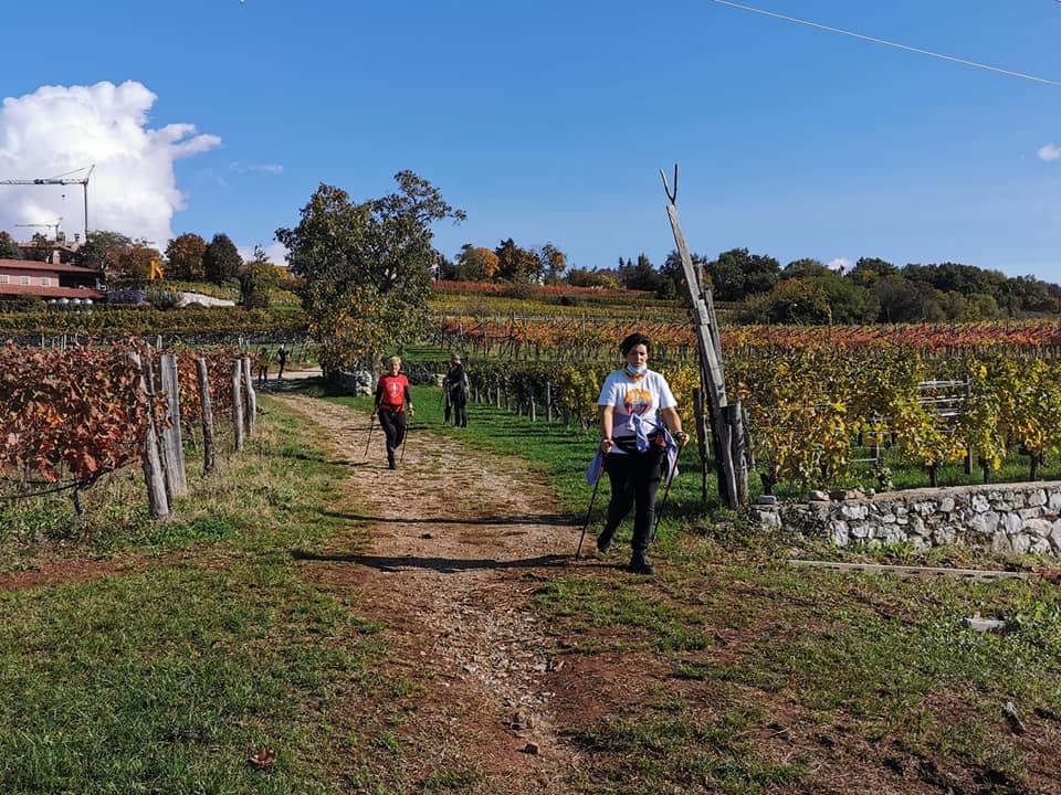 2020-10-25 Nordic Walking - Prepotto (D) (3)