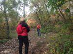 2020-10-28 Nordic Walking - Doberdò del Lago, Rifugio Cadorna, Gradina (S) (5)