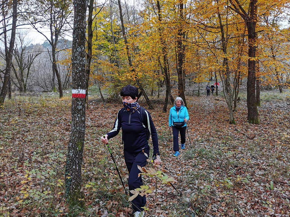 2020-11-14 Monte Lanaro (D) (17)