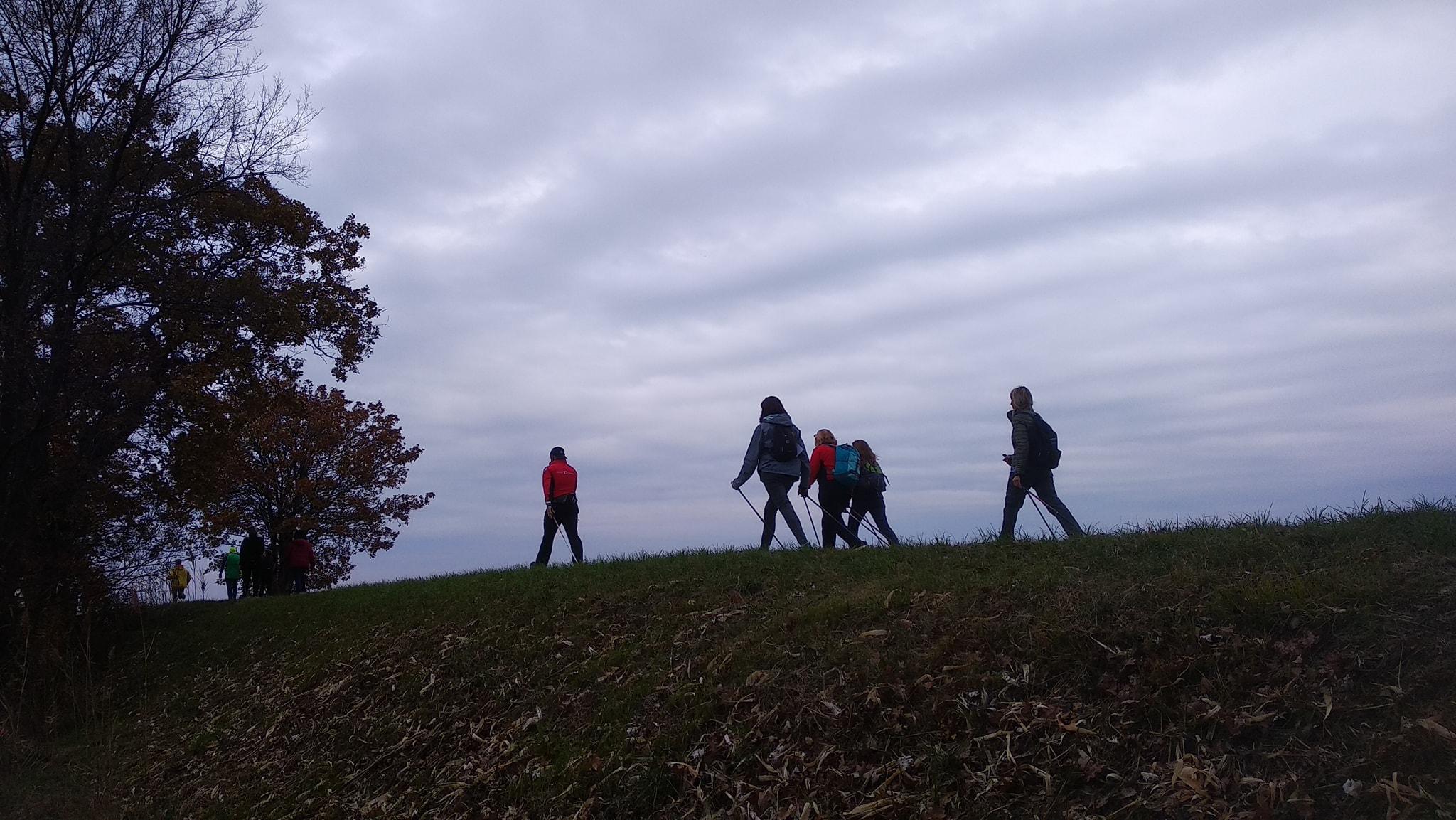 34^ Marcia degli Alberoni 02-12-2018 (G3)