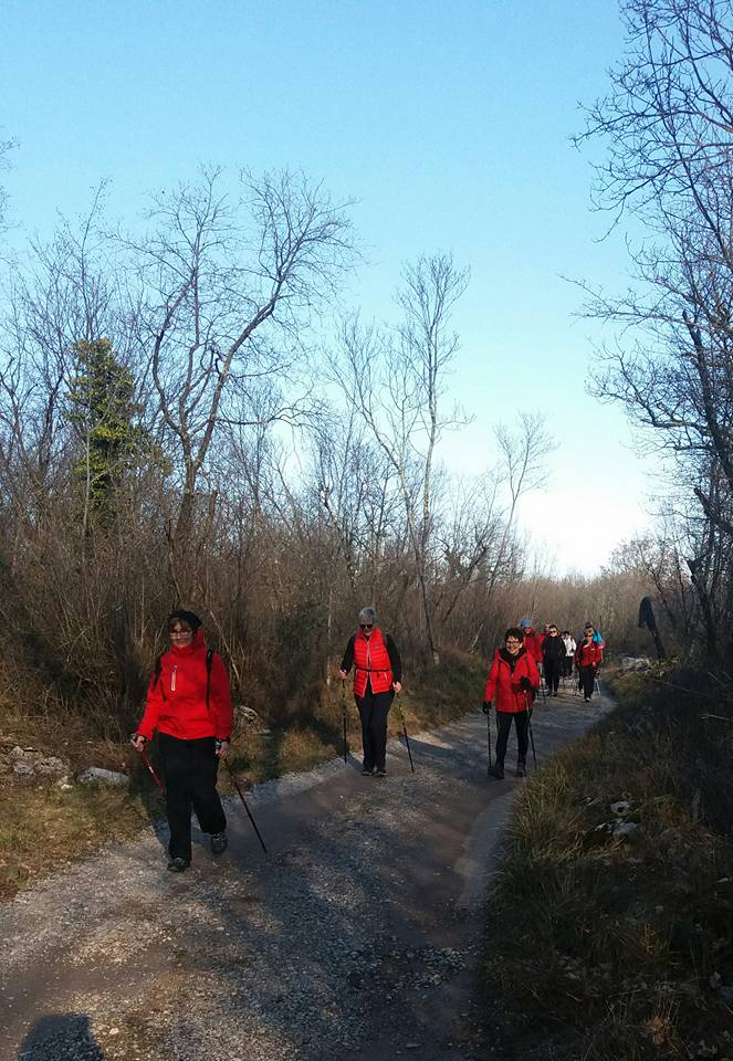 Gorjansko-Voilcij grad - Nadrozica 14-02-2018 (C2)