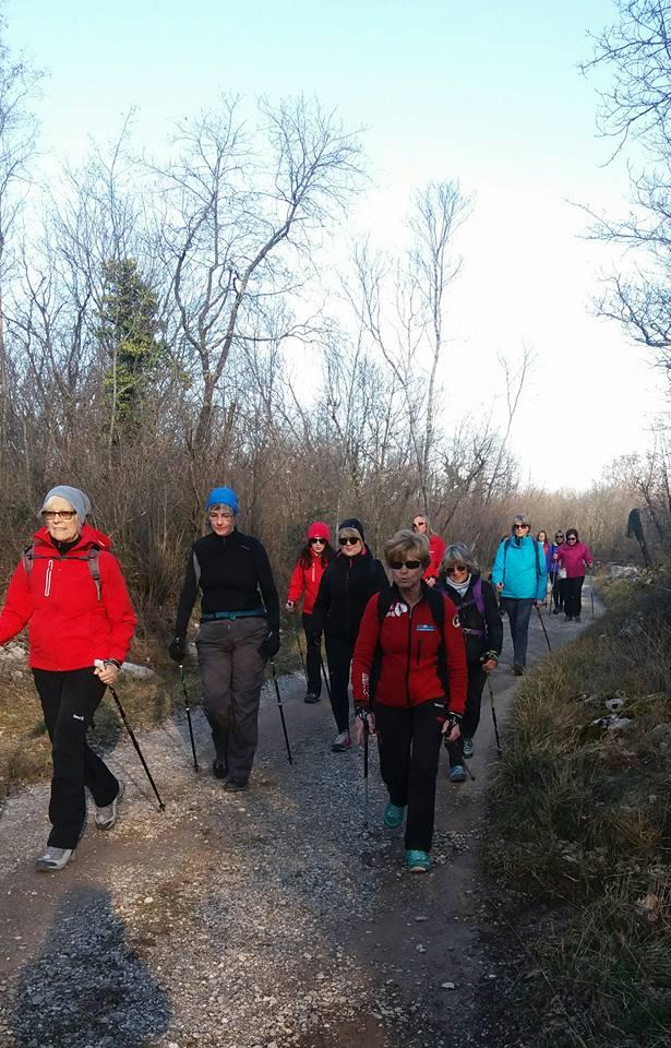 Gorjansko-Voilcij grad - Nadrozica 14-02-2018 (C5)