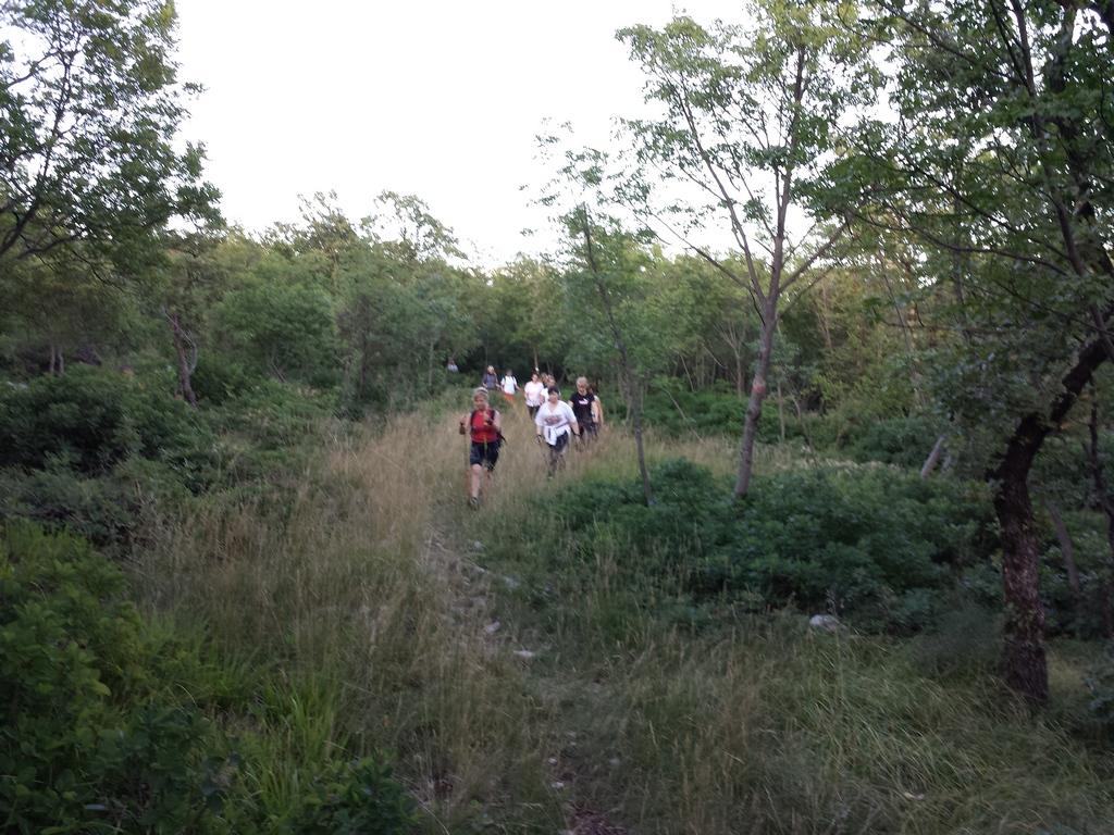 Nordic Walkig Monte Sambuco e Allegra Fattoria (31)