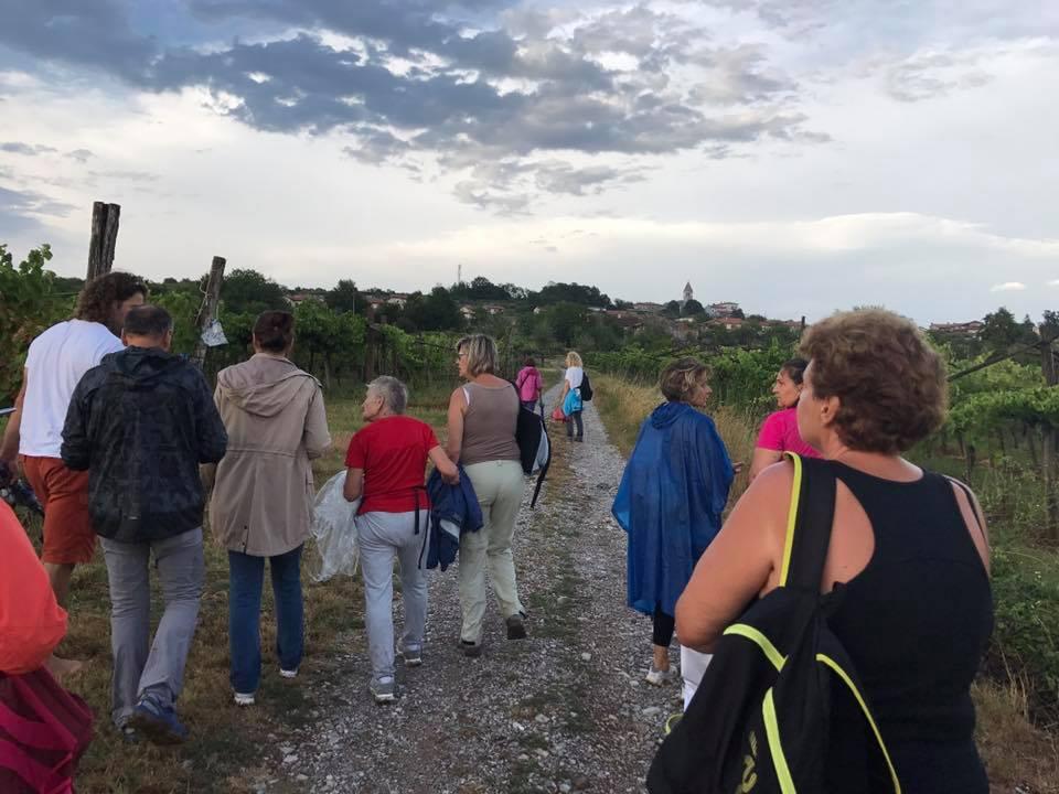 Piantagione di Canapa-Konoplja a Tomaj D 10ago2017 (2)