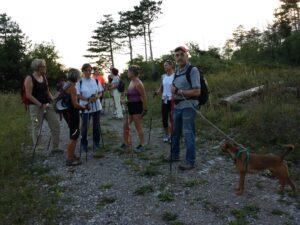 Skrbina-Sentiero delle More 2014-08-02 (2)