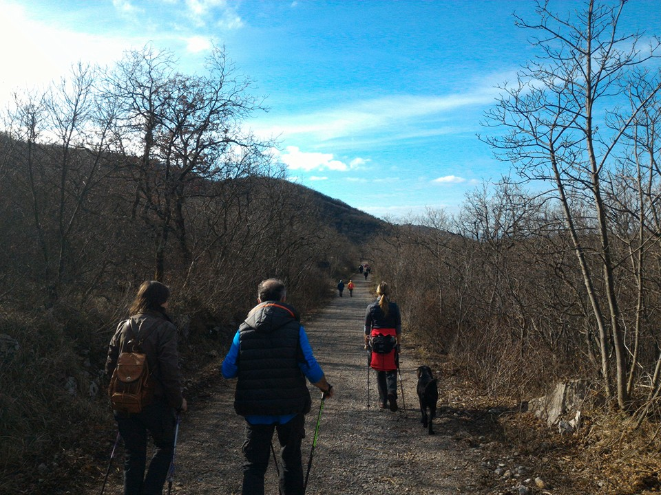 2016-02-03+06 - Medeazza-Cerolje (1)