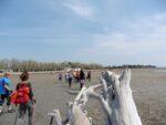 2015-04-08 Nordic Walking - Grado (2)
