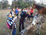 2015-11-09 Nordic Walking - Parco Globojner (7)