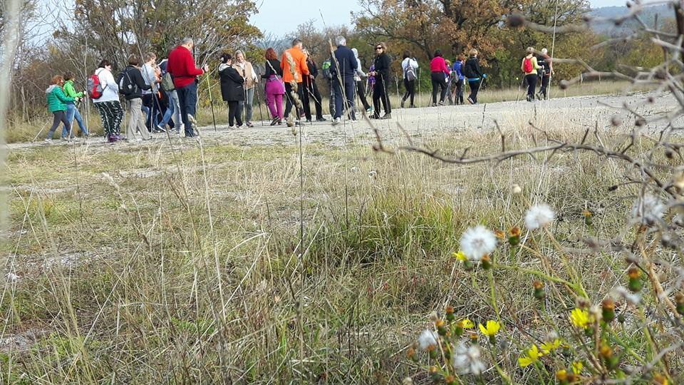 2015-11-11+14 Nordic Walking - Parco Globojner (8)
