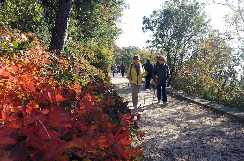 2015-11-25 Nordic Walking - Malchina - Slivia (27)