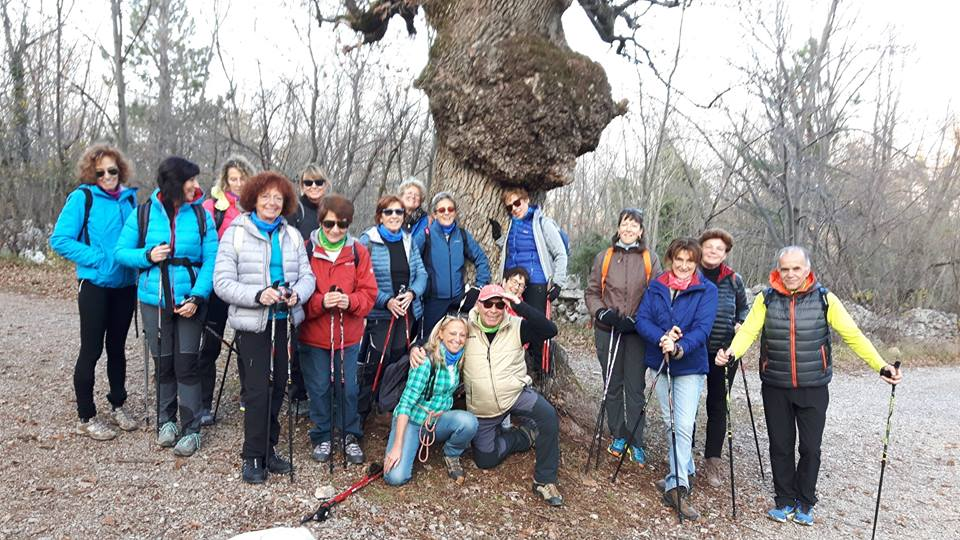 2015-12-12 Nordic Walking - Gropada - Trebiciano (1)