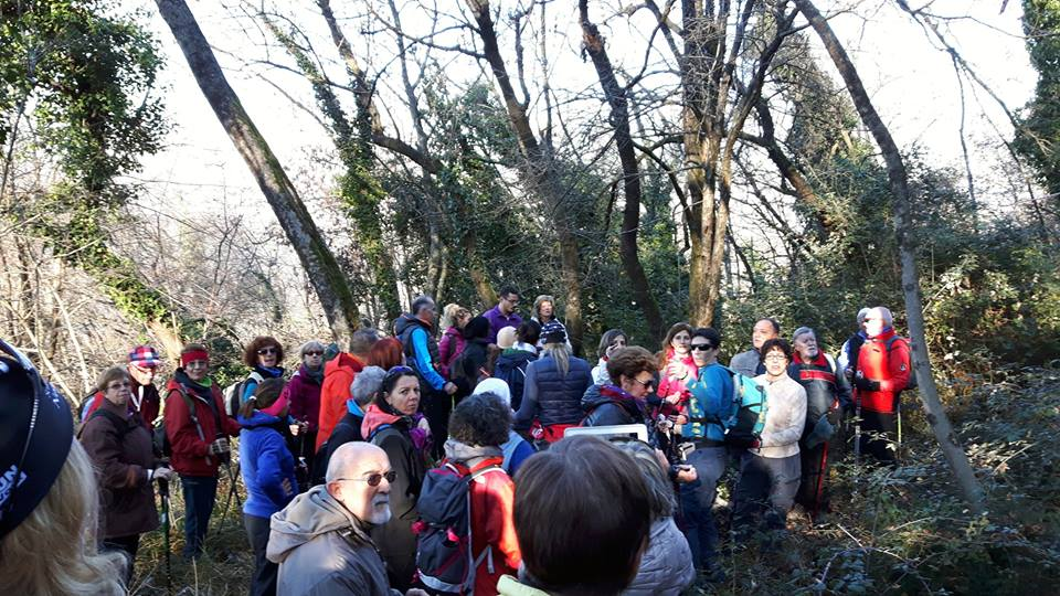 2015-12-20 Nordic Walking - Flondar+Nad Logem(2)
