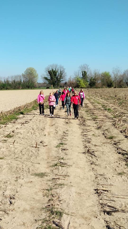 24ª Camminata Tra Le Vigne De Lisonz 31mar2019(D3)