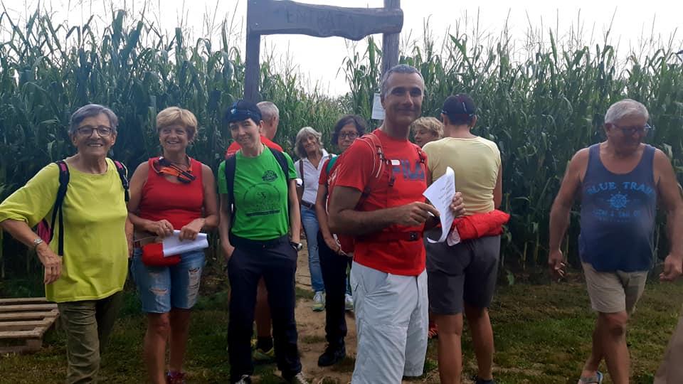 Labirinto nel mais - Fattoria Didattica La Selce - Bagnaria Arsa (UD) 08ago2019 (C3)