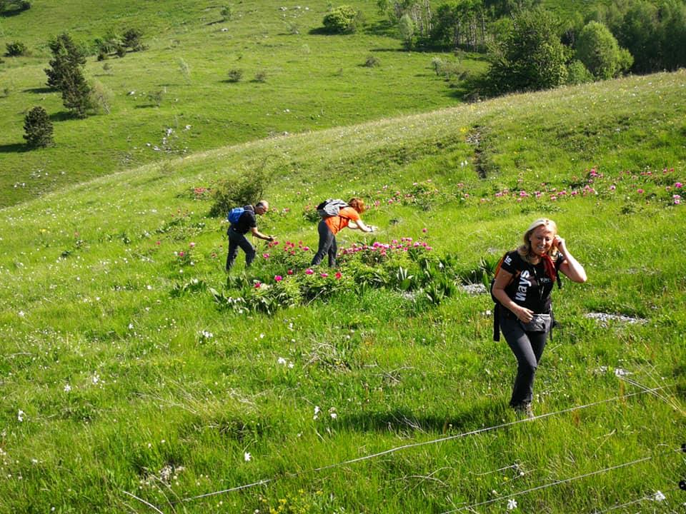 Vremščica-Monte Auremiano 26mag2019 (D1)