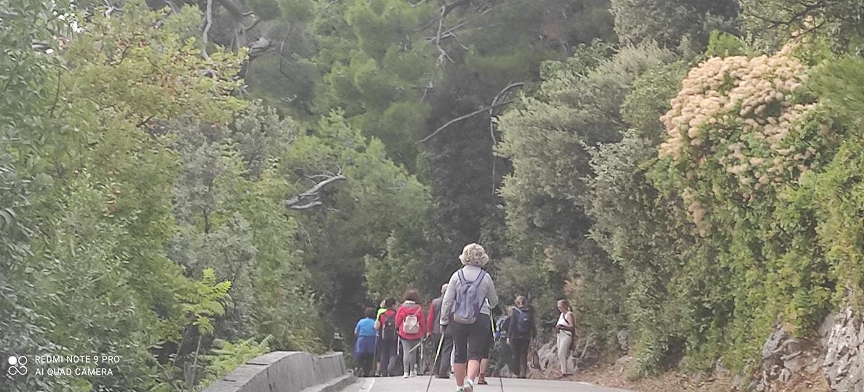 2021-09-20 Sentiero della SAlvia (SB)