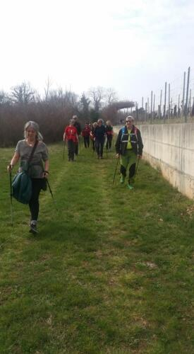 Medeazza - Brestovizza 28-03-2018 (C6)