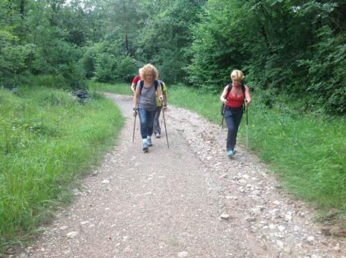 Riserva Naturale Monte Lanaro 13-06-2018 (S6)