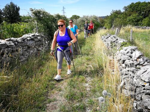 San Pelagio - Šempolaju - Castelliere di Slivia 07-07-2018 (D13)