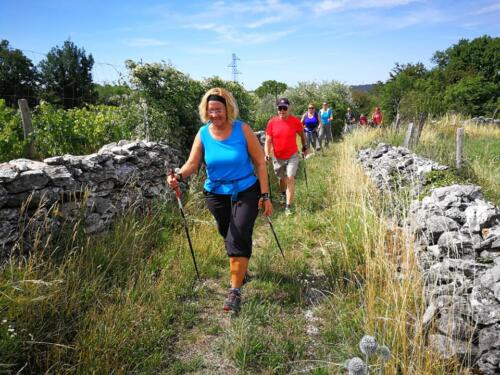 San Pelagio - Šempolaju - Castelliere di Slivia 07-07-2018 (D14)